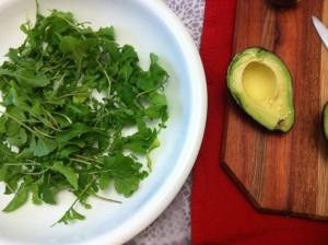 Mango avocado and rucola salad with avocado up close