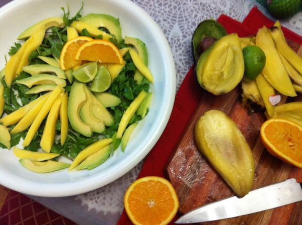 Mango avocado and rucola salad with citrus up close