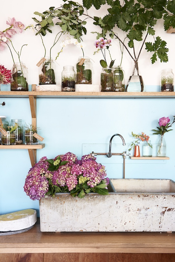 Cecilia Fox Hydrangeas in basin by Eve Wilson