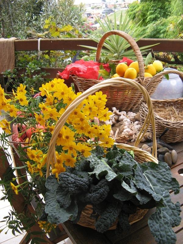 Rose Creek Estate and Growing Honest food bounty basket on table