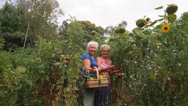 Growing Honest Food - Gabriella and Lina in the garden picking tomatoes