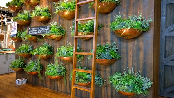 Royal Melbourne Show Masterchef Kitchen plant wall