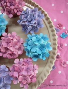 Mad About Cakes blue and pink cupcakes