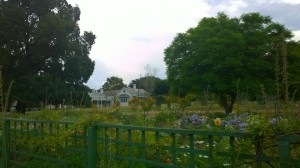 Dine from Melbas Garden garden