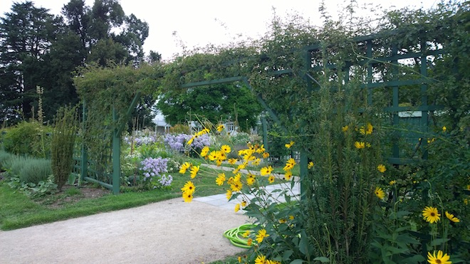 Dine in Melbas Garden garden