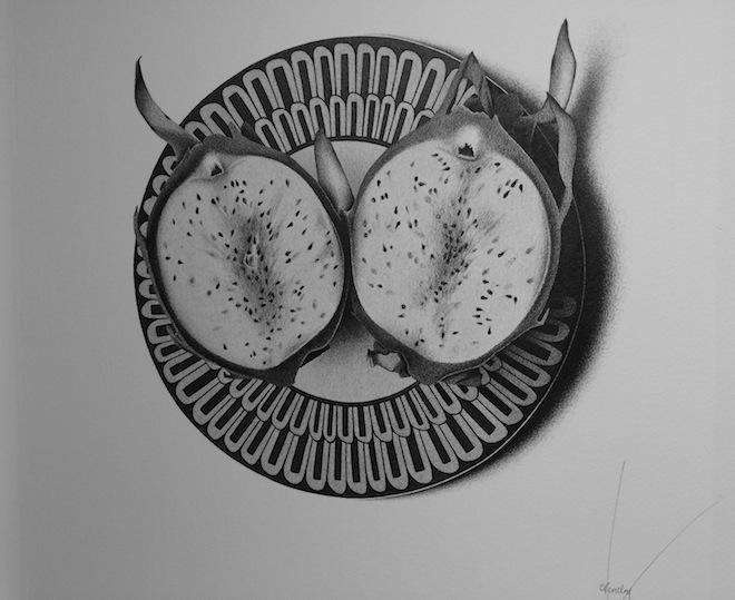 CJ Hendry Exhibition dragonfruit