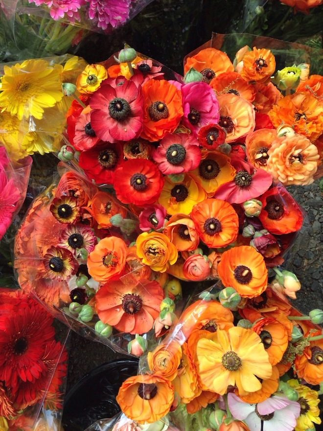 Daylesford & Macedon Ranges Food Mini Guide Kyneton Farmers Market Flowers 2