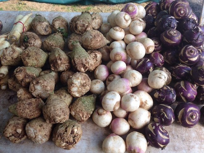 Daylesford & Macedon Ranges Food Mini Guide bulbs and roots