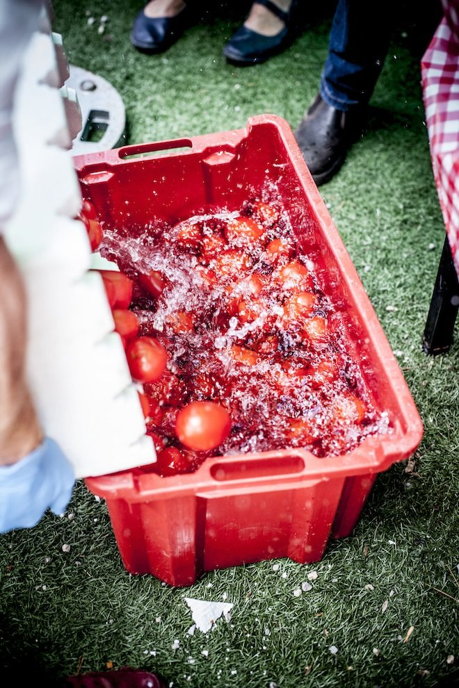 Melbourne Tomato Festival 2016 Tomatoes on ice
