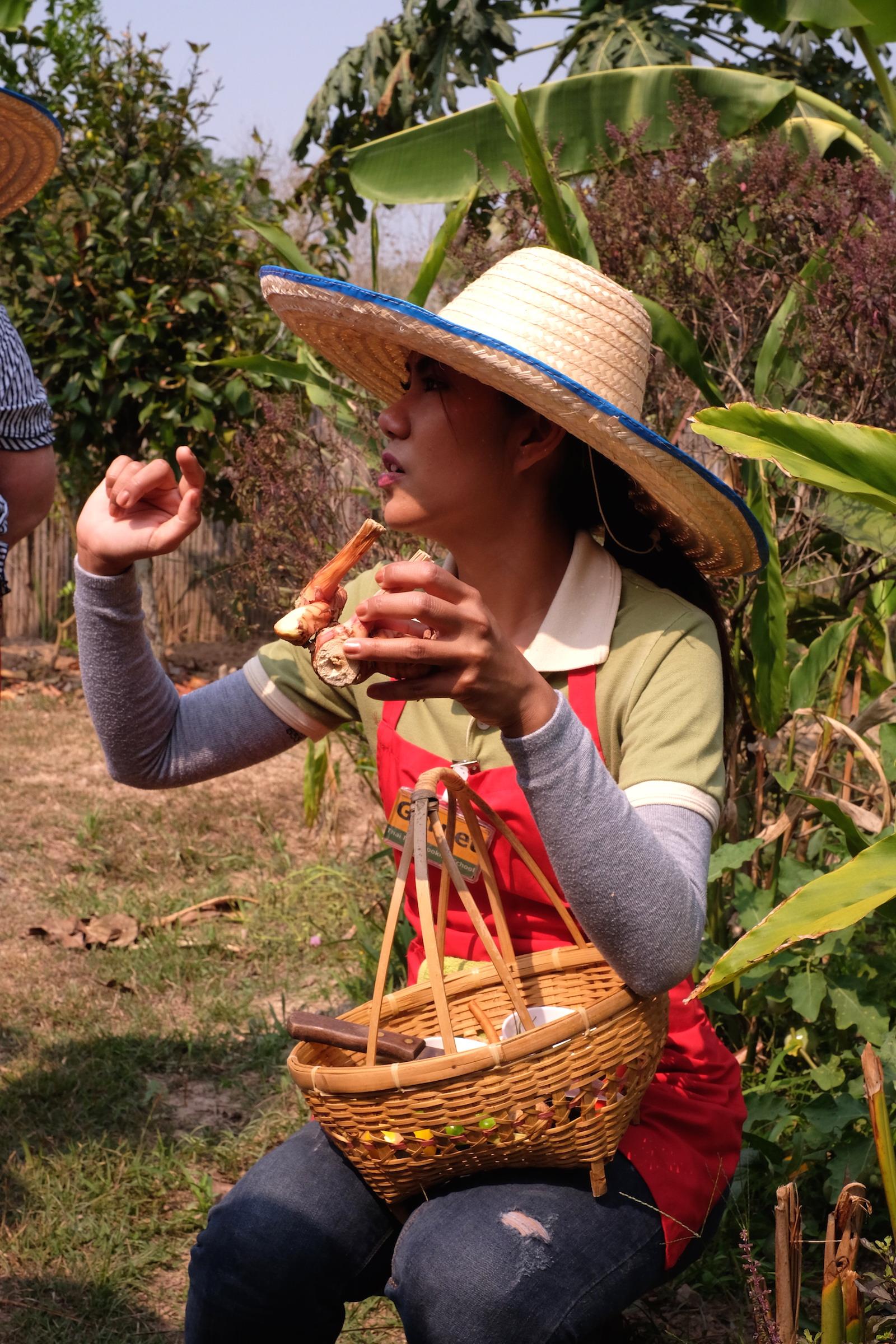 Chiang Mai Thai Farm Cooking School Garnet