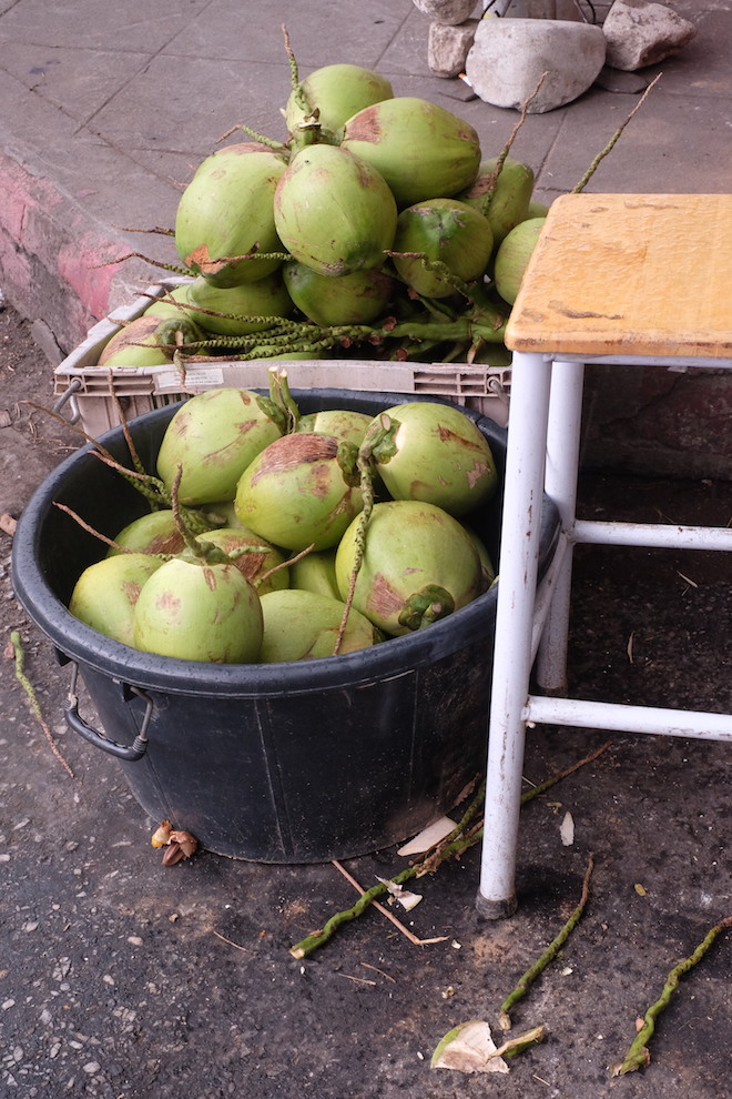 Street Life in Phitsanulok coconuts
