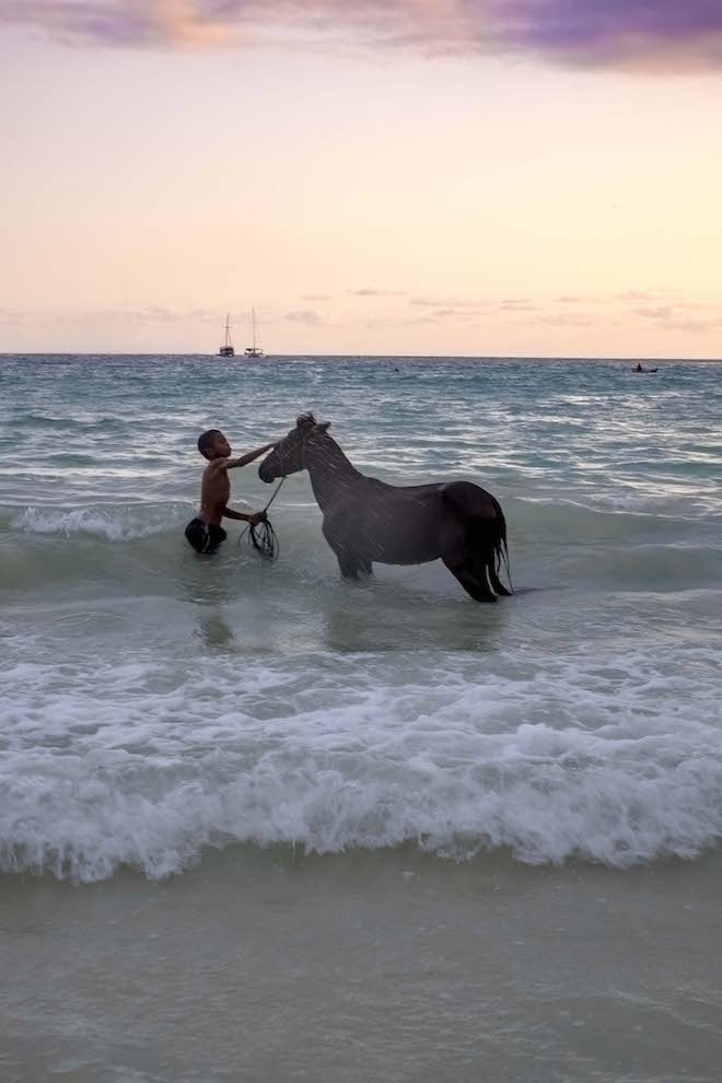 Sumba in Pictures beach boy with horse