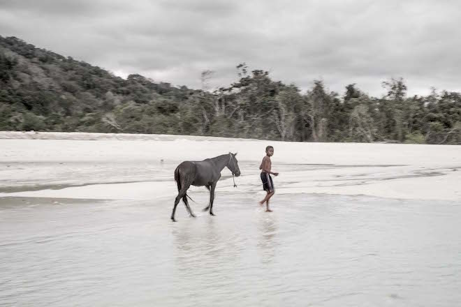 Sumba in Pictures boy with horse b w