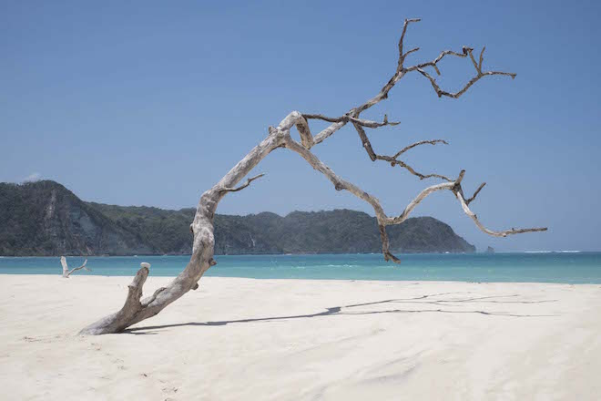 Sumba in Pictures stick in sand