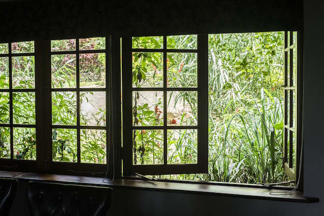 Sri Lanka Ceylon Tea Trails Castlereagh Window