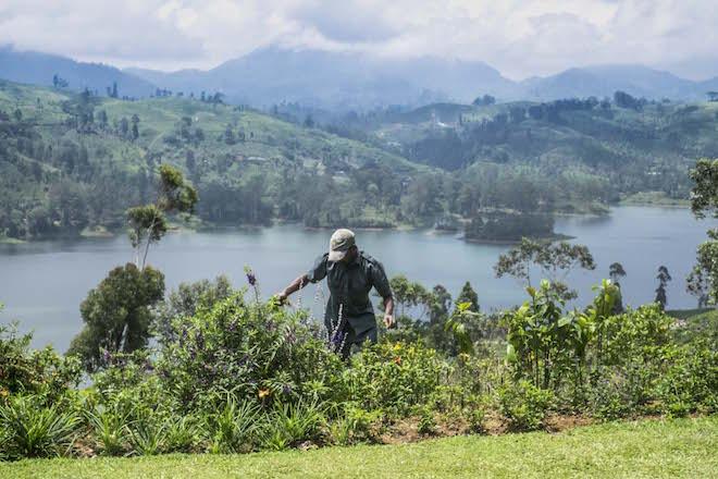 Sri Lanka Ceylon Tea Trails Porch 4