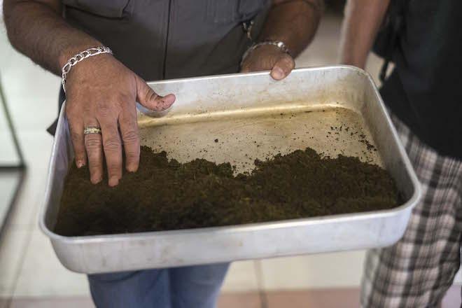 Sri Lanka Ceylon Tea Trails Refined Tea