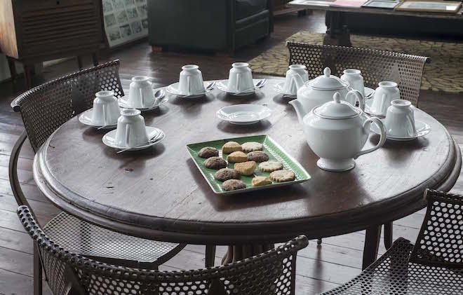 Sri Lanka Ceylon Tea Trails Tasting Landscape