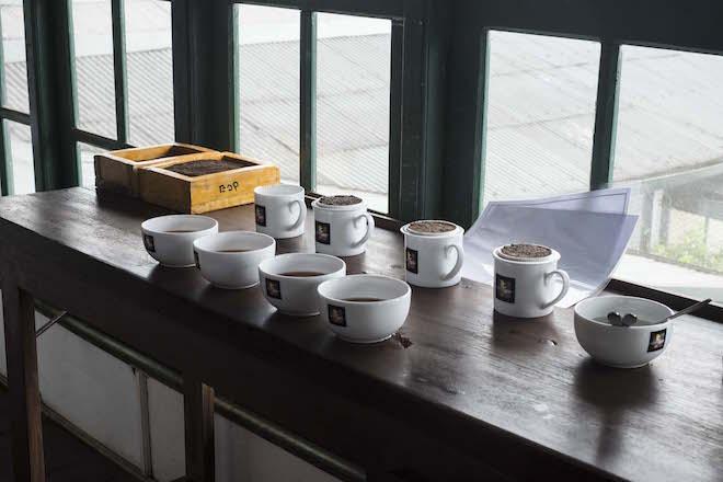 Sri Lanka Ceylon Tea Trails Tasting Table