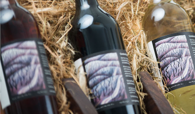 Goodwillwine wine bottles cropped