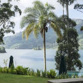 Travel: Ceylon Tea Trails in Sri Lanka